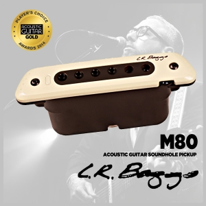 [L.r Baggs] M80 acoustic guitar soundhole pickup