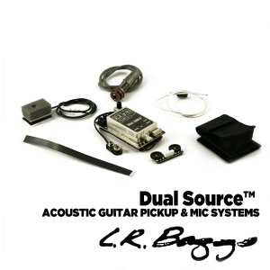 [L.R Baggs] Dual Source